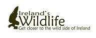 Top Zoo and Wildlife Blogs 2020 | Ireland's Wildlife